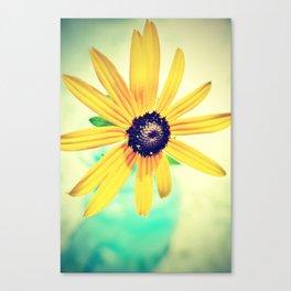 Bright Eyed Canvas Print