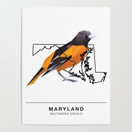 Maryland – Baltimore Oriole Poster