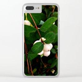 Symphoricarpos, Seattle #3 [Cecilia Lee] Clear iPhone Case