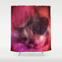 Rose Princess Shower Curtain