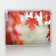Autumn reds Laptop & iPad Skin