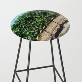 Santa Barbara Vineyard Bar Stool