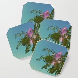 Mimosa Tree in Bloom Coaster