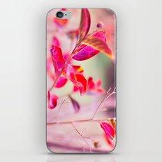 Princess Leaves iPhone & iPod Skin