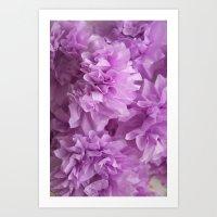 Crepe flower lavender Art Print