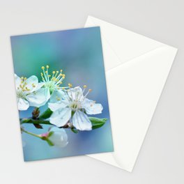 Spring 270 Stationery Cards
