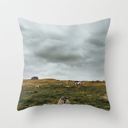 Wild Horses in Dartmoor NP Throw Pillow