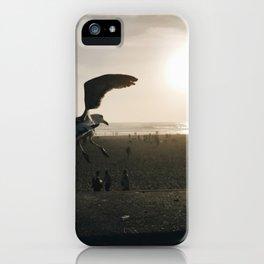 dust iPhone Case