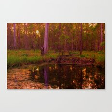 Bush Billabong Canvas Print