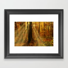 Did you see the fairies? Framed Art Print