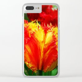 Curly Tulip Red And Yellow Clear iPhone Case
