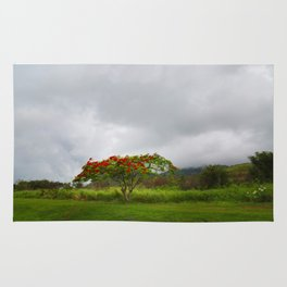 Royal Poinciana Tree Rug