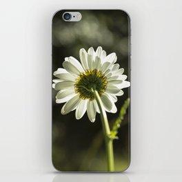 Daisy Light iPhone Skin