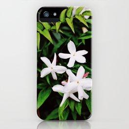 Grow 1 iPhone Case