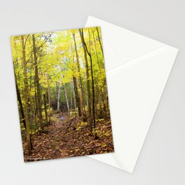 Photo 56 Landscape Forest Stationery Cards