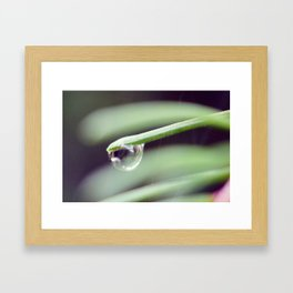 Water Droplet Framed Art Print