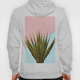 Agave Plant on Pink and Teal Wall Hoody