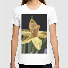 Rain drop daffodil T-shirt