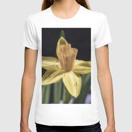 Rain drop daffodil T-shirt