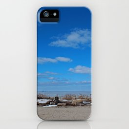 Winter Interlude iPhone Case