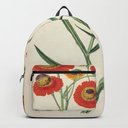 Helenium Atropurpureum Vintage Botanical Floral Flower Plant Scientific Illustration Backpack
