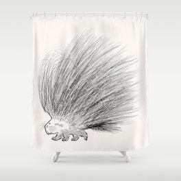 The Porcupine Shower Curtain