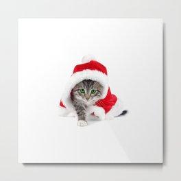 cat ll Metal Print