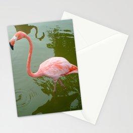 Punta Cana Flamingo Stationery Cards