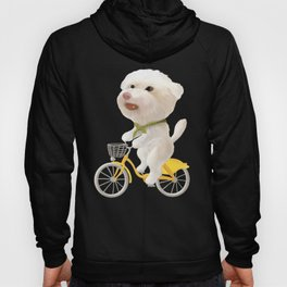 Cat and dog riding bicycle Hoody