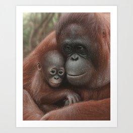 Orangutan Mother and Baby - Snuggled Art Print