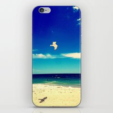 Lonesome Seagul iPhone & iPod Skin