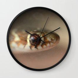 Snake or Fish? Wall Clock