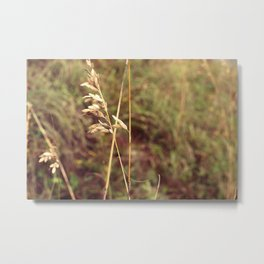 Billowing Wheat Metal Print