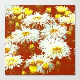 ABSTRACT GARDEN WHITE SHASTA DAISIES ON CHOCOLATE BROWN ART Canvas Print