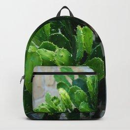 Texas Cactus Backpack