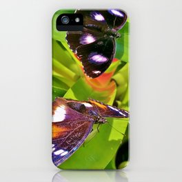 Butterflies Chatting iPhone Case