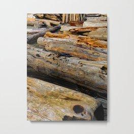 Driven Driftwood Metal Print