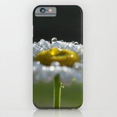 Sparkling Daisy iPhone 6s Slim Case