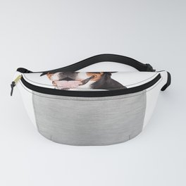 Greater Swiss Mountain puppy dog in your pocket Shirt Fanny Pack