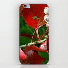 Fall Berries iPhone & iPod Skin