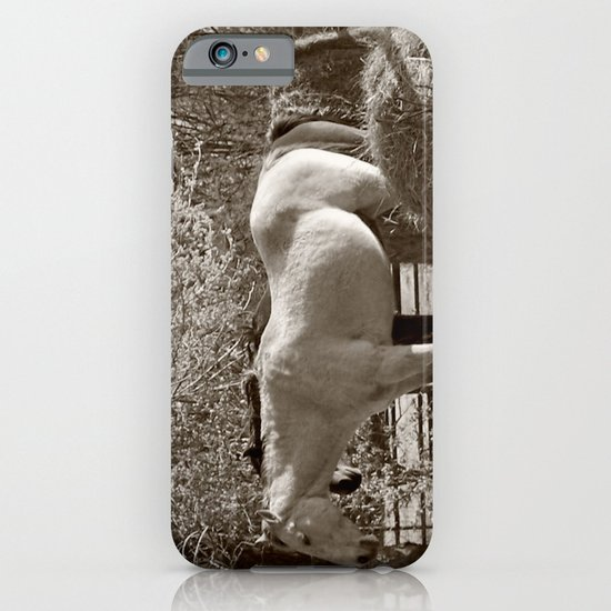 Country iPhone & iPod Case
