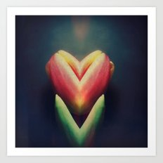 tulip love - iPhoneography Art Print