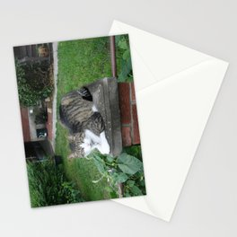 Putting the Pu$$y on a Pedestal  Stationery Cards