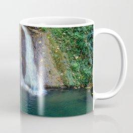 Autumn leaves in the waterfall Coffee Mug