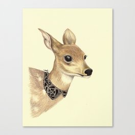 Fancy Deer Canvas Print