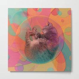 Kitty Cat Sweet Dream Metal Print