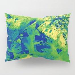Textura de rocas antiguas Pillow Sham