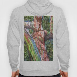 Rainbow Eucalyptus Hoody