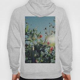 poppy flower no14 Hoody