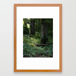 light broke in Framed Art Print